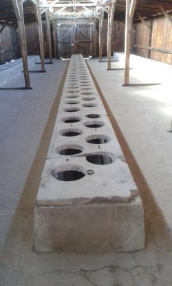 Toalety w Bikenau