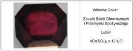 Wyróżnienie w VIII Ogólnopolskim Konkursie Wzrostu Kryształów dla Młodzieży Szko